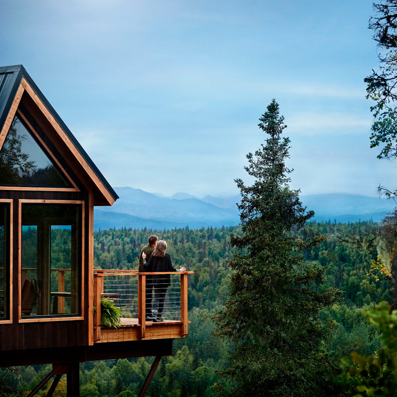 Tree House Princess Alaska